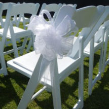 Chair Embellishments